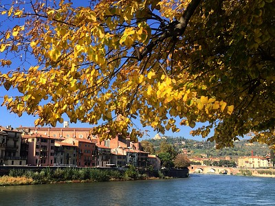 Adige River, my Verona in fall