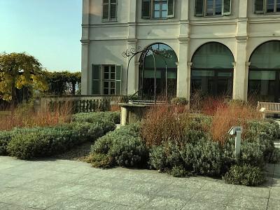 Vinícola de Gaja, Piemonte