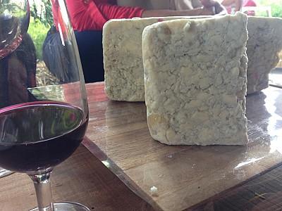 Queijo Blu Bahia, em homenagem a Kozmann. Em degustação na fábrica de queijos.